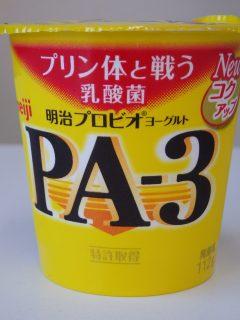 PA-3のパッケージ