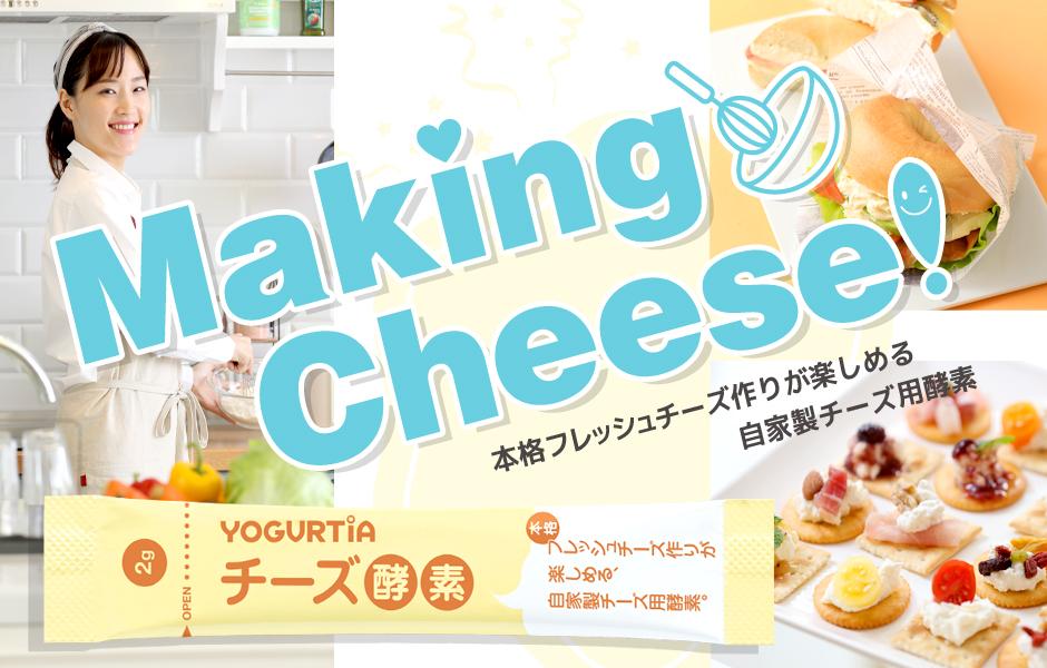 チーズ酵素 特設サイト